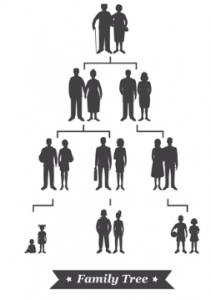 graphic of family tree